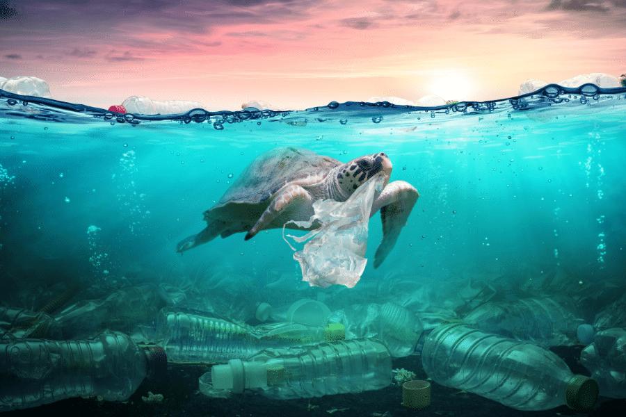 ocean plastic bad