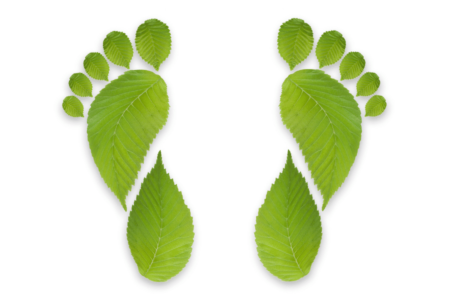 green footprint hemp