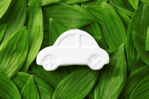 Sustainable Automotive Hemp Supply Chain