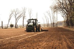 industrial hemp farming